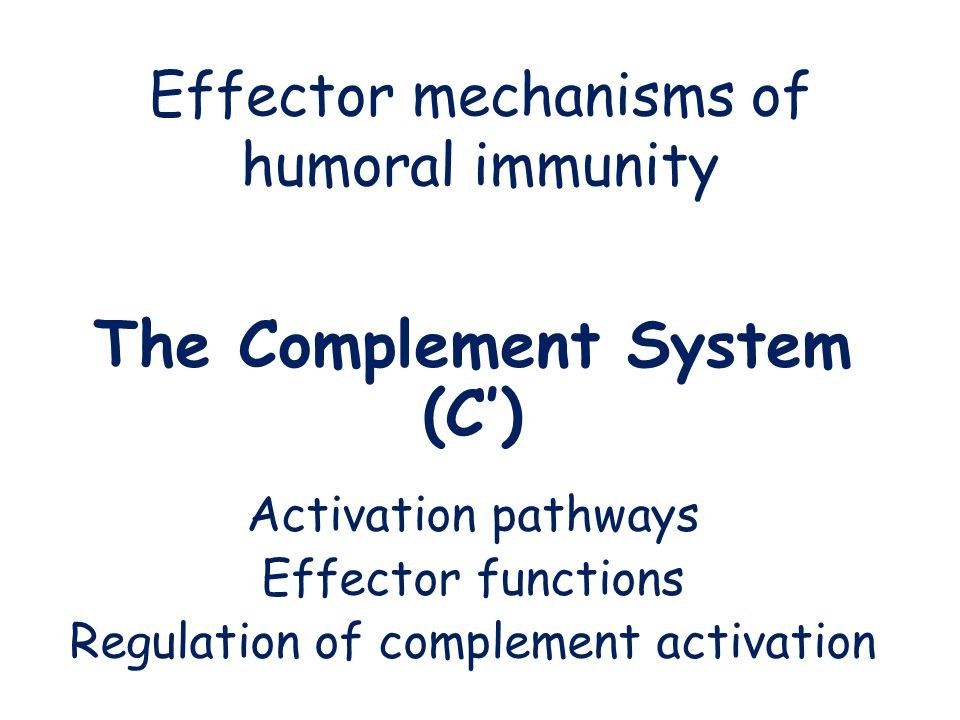 Effector mechanisms of humoral immunity The Complement System (C') Activation pathways Effector functions Regulation of complement activation