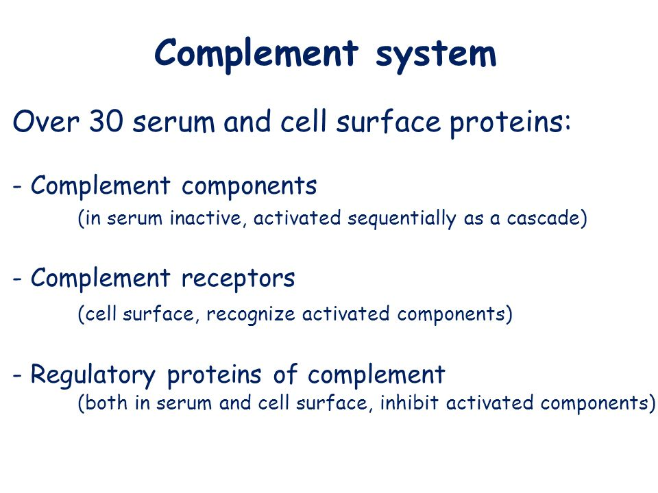 Over 30 serum and cell surface proteins: - Complement components (in serum inactive, activated sequentially as a cascade) - Complement receptors (cell