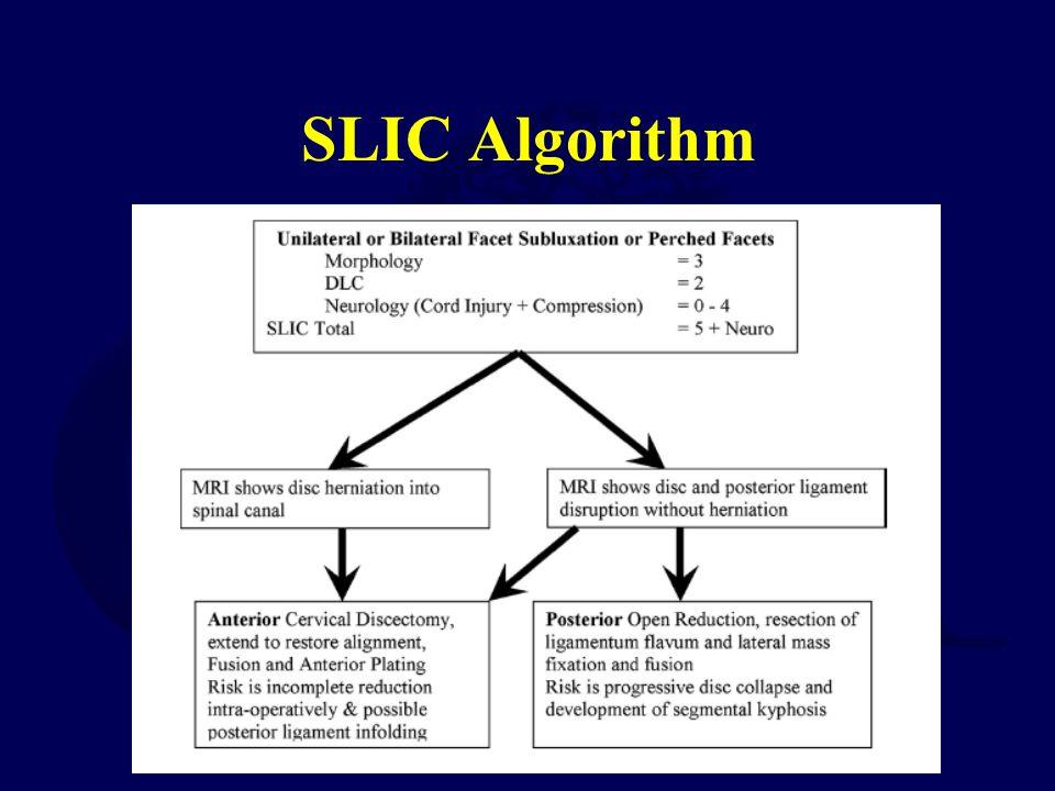 SLIC Algorithm
