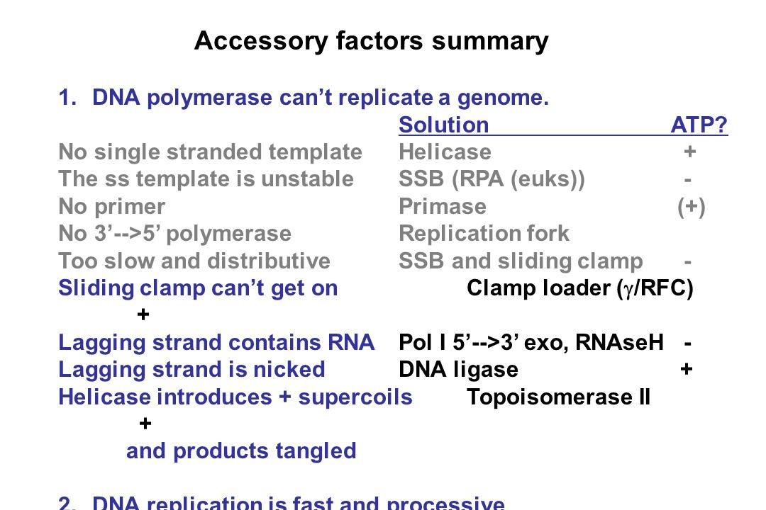 Accessory factors summary 1.DNA polymerase can't replicate a genome.