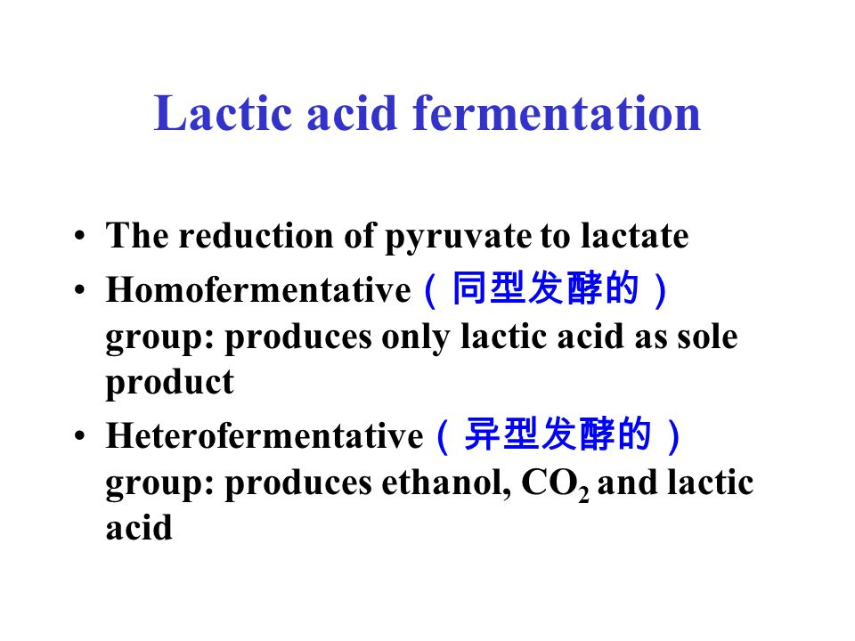 Lactic acid fermentation The reduction of pyruvate to lactate Homofermentative (同型发酵的) group: produces only lactic acid as sole product Heterofermentative (异型发酵的) group: produces ethanol, CO 2 and lactic acid