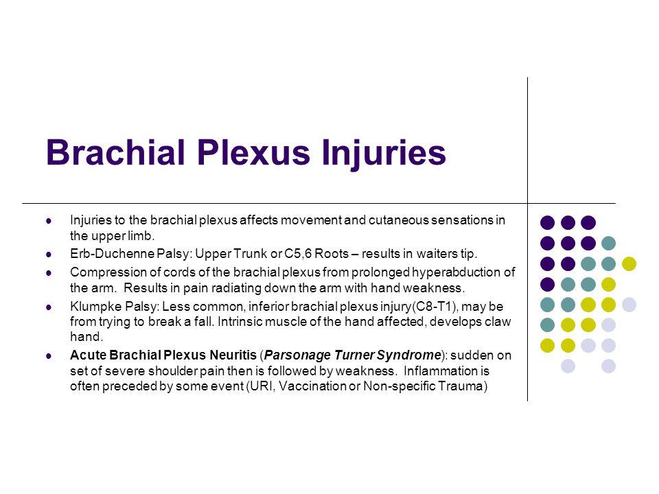 Brachial Plexus Injuries Injuries to the brachial plexus affects movement and cutaneous sensations in the upper limb. Erb-Duchenne Palsy: Upper Trunk