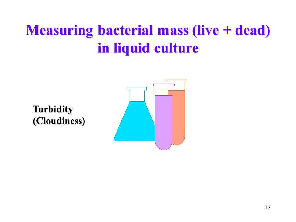 13 Measuring bacterial mass (live + dead) in liquid culture Turbidity(Cloudiness)