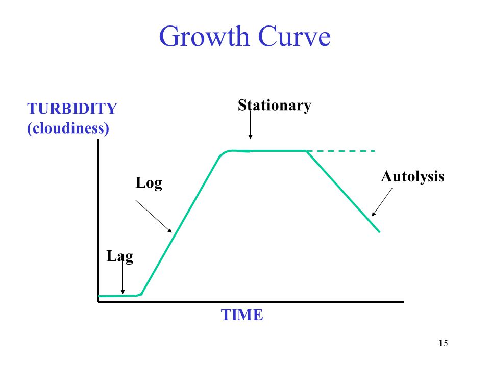 15 Growth Curve TURBIDITY (cloudiness) TIME Lag Log Stationary Autolysis