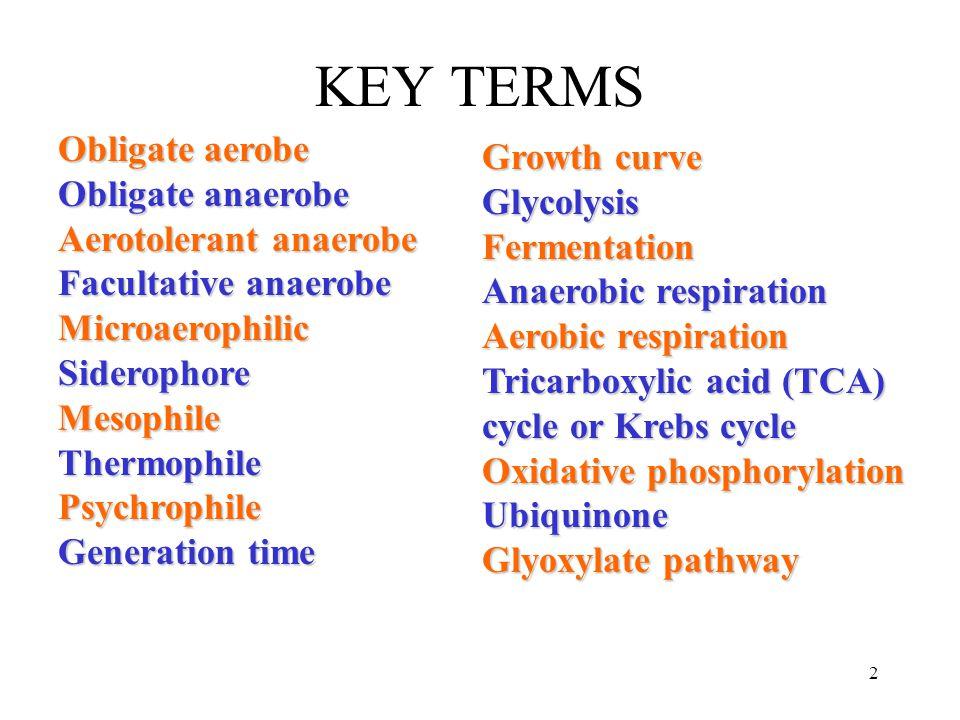 23 Krebs Cycle (C4-C6 intermediate compounds Krebs Cycle (C4-C6 intermediate compounds ) Pyruvate Pyruvate 3CO 2 (C3) NADNADH NADH NAD Oxidative phosphorylation O2 O2O2 O2 H2OH2OH2OH2O ADP ATP (C1)