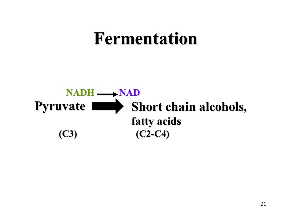 21 Fermentation Pyruvate Pyruvate (C3) NADH NADHNAD Short chain alcohols, fatty acids (C2-C4)