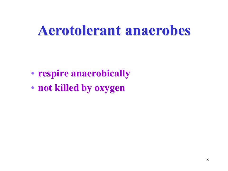 6 Aerotolerant anaerobes respire anaerobicallyrespire anaerobically not killed by oxygennot killed by oxygen
