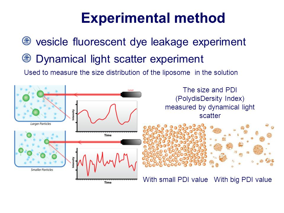 Experimental method vesicle fluorescent dye leakage experiment Dynamical light scatter experiment Used to measure the size distribution of the liposome in the solution The size and PDI (PolydisDersity Index) measured by dynamical light scatter With small PDI valueWith big PDI value