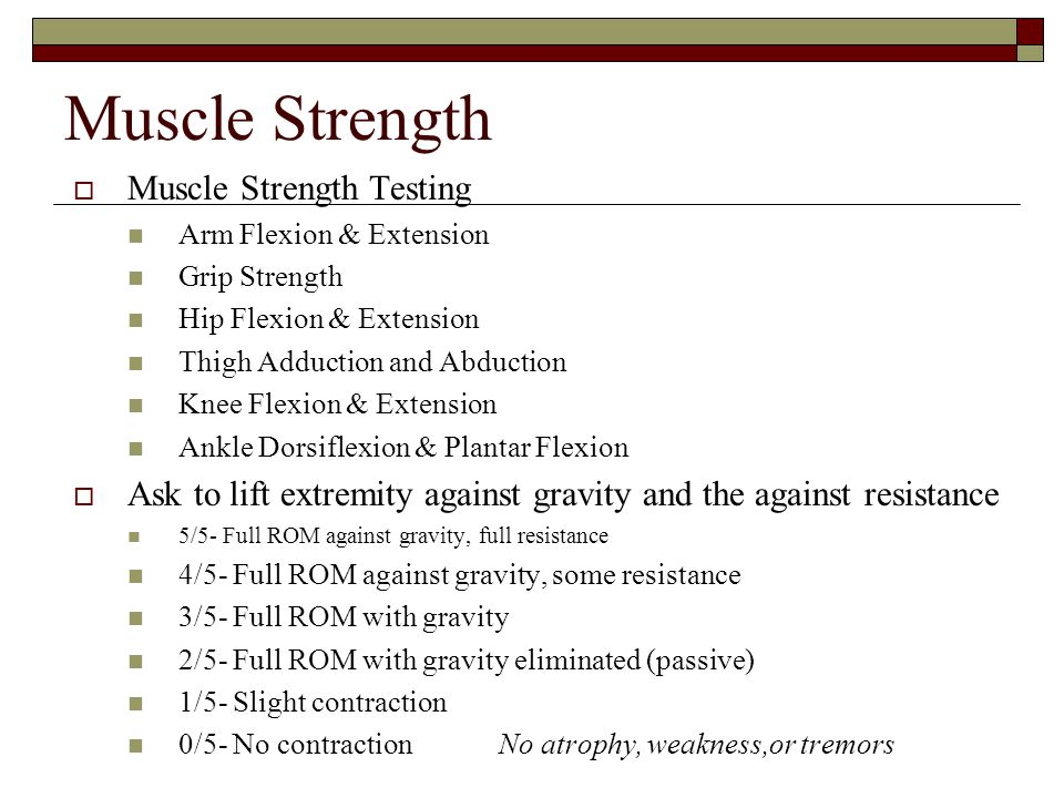 Muscle Strength  Muscle Strength Testing Arm Flexion & Extension Grip Strength Hip Flexion & Extension Thigh Adduction and Abduction Knee Flexion & E