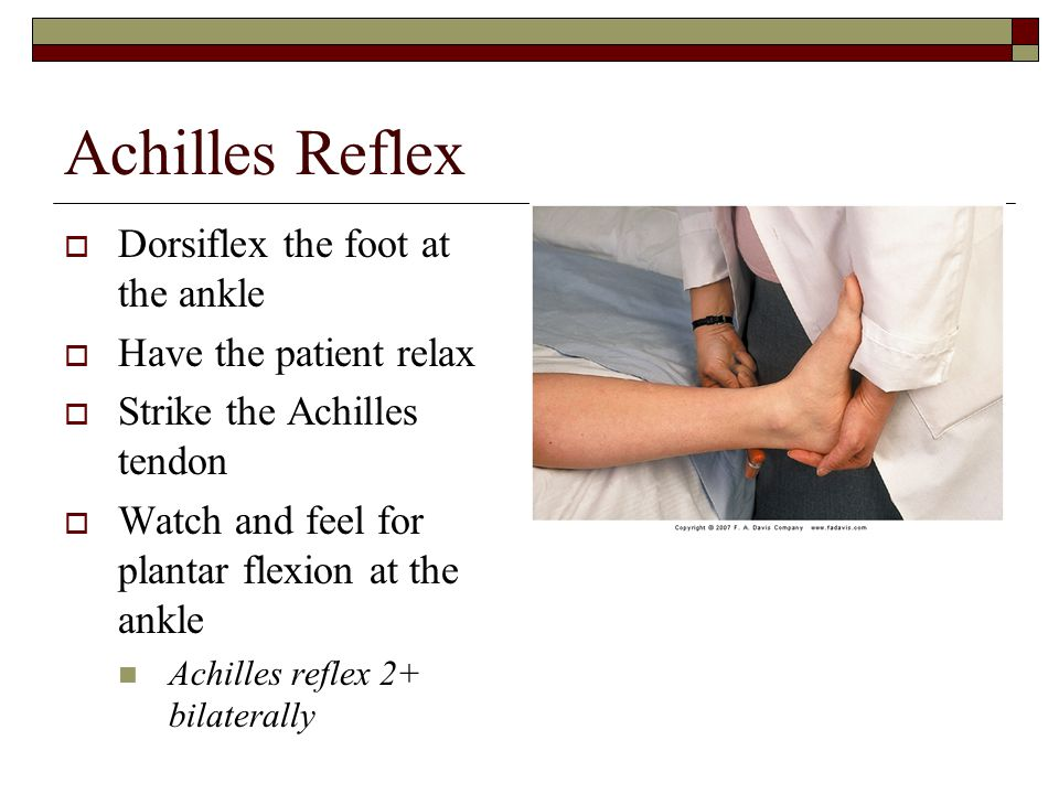 Achilles Reflex  Dorsiflex the foot at the ankle  Have the patient relax  Strike the Achilles tendon  Watch and feel for plantar flexion at the an