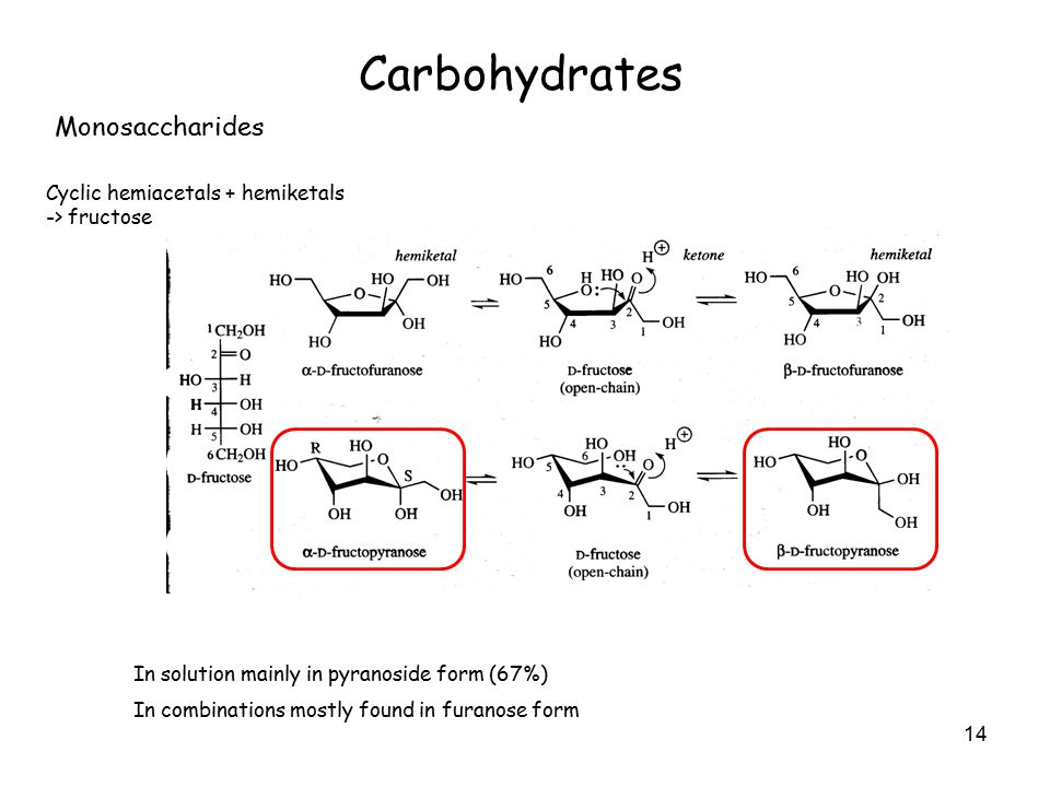 14 Carbohydrates Monosaccharides Cyclic hemiacetals + hemiketals -> fructose In solution mainly in pyranoside form (67%) In combinations mostly found in furanose form