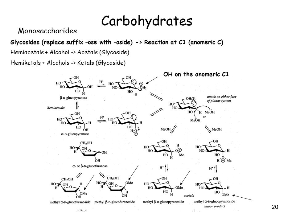 20 Carbohydrates Monosaccharides Glycosides (replace suffix –ose with –oside) -> Reaction at C1 (anomeric C) Hemiacetals + Alcohol -> Acetals (Glycoside) Hemiketals + Alcohols -> Ketals (Glycoside) OH on the anomeric C1