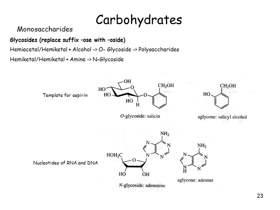 23 Carbohydrates Monosaccharides Glycosides (replace suffix –ose with –oside) Hemiacetal/Hemiketal + Alcohol -> O- Glycoside -> Polysaccharides Hemiketal/Hemiketal + Amine -> N-Glycoside Template for aspirin Nucleotides of RNA and DNA