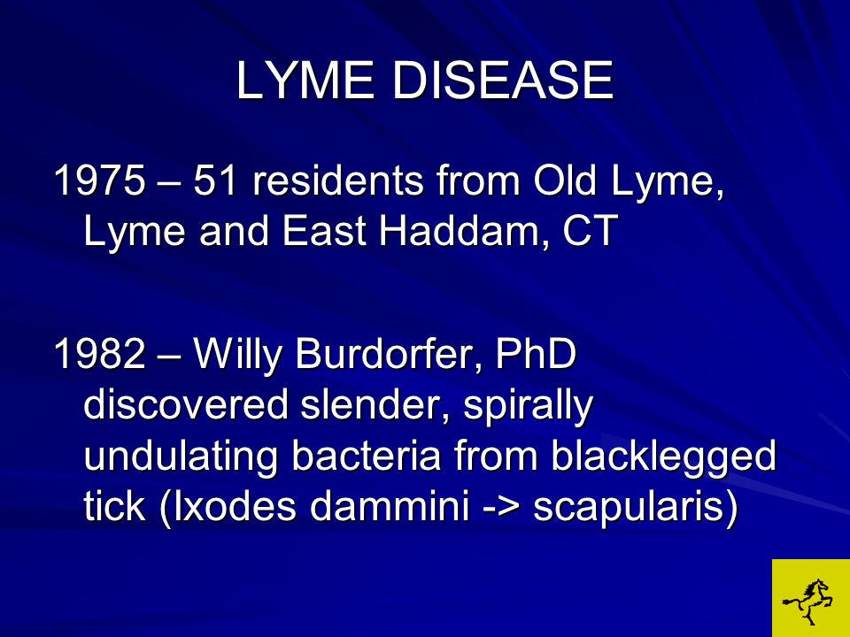 LYME DISEASE Other Antibiotics: (Doxy & Naxcel) Rise in titers and clinical signs when treatment is stopped in 75% of each group Appear to inhibit reproduction, not eradication of B.burdoferi Doxy has anti-inflammatory effects = false sense of improvement