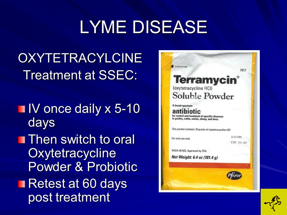 LYME DISEASE OXYTETRACYLCINE Treatment at SSEC: IV once daily x 5-10 days Then switch to oral Oxytetracycline Powder & Probiotic Retest at 60 days post treatment