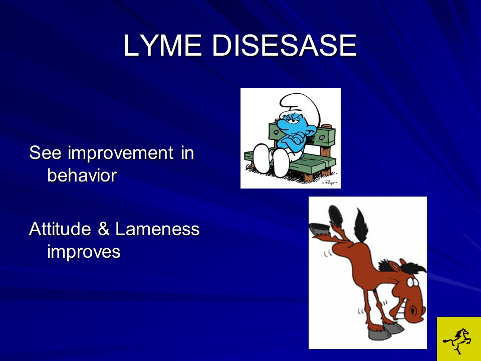 LYME DISESASE See improvement in behavior Attitude & Lameness improves