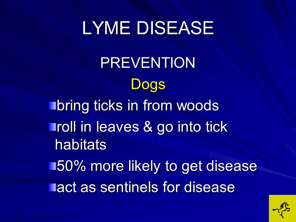 LYME DISEASE PREVENTIONDogs bring ticks in from woods roll in leaves & go into tick habitats 50% more likely to get disease act as sentinels for disease