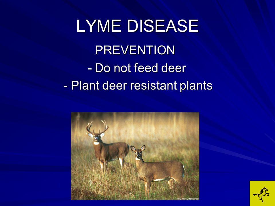 LYME DISEASE PREVENTION -Do not feed deer -Do not feed deer - Plant deer resistant plants