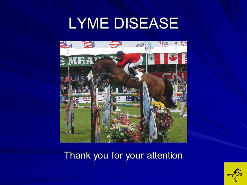 LYME DISEASE Thank you for your attention