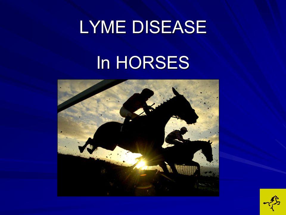 LYME DISEASE VAGUE & VARIABLE SIGNS: VAGUE & VARIABLE SIGNS:Stiffness/lameness Muscle tenderness Hyperaesthesia (sensitivity) Swollen/sore joints Behavioral changes –Lethargic, grumpy