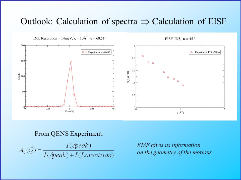 Outlook: Calculation of spectra  Calculation of EISF From QENS Experiment: EISF gives us information on the geometry of the motions S(q,w=0)