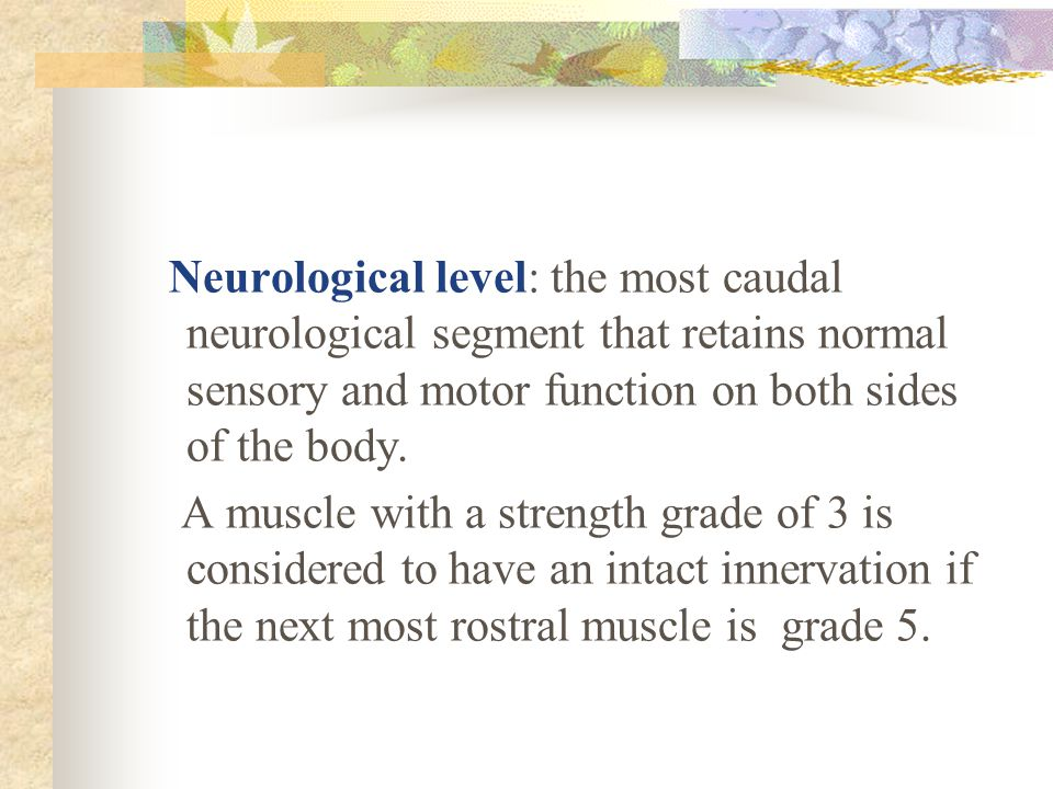 Neurological level: the most caudal neurological segment that retains normal sensory and motor function on both sides of the body.  A muscle with a s