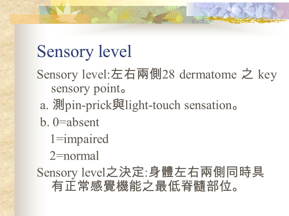 Sensory level Sensory level: 左右兩側 28 dermatome 之 key sensory point 。 a. 測 pin-prick 與 light-touch sensation 。 b. 0=absent 1=impaired 2=normal Sensory