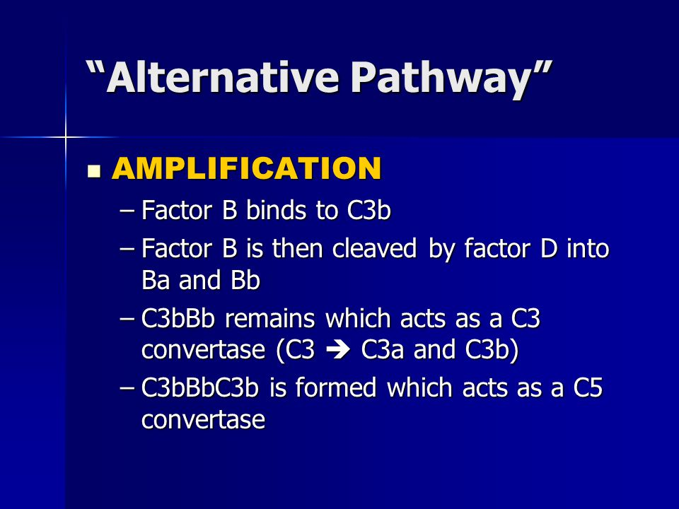 Alternative Pathway AMPLIFICATION AMPLIFICATION –Factor B binds to C3b –Factor B is then cleaved by factor D into Ba and Bb –C3bBb remains which acts as a C3 convertase (C3  C3a and C3b) –C3bBbC3b is formed which acts as a C5 convertase