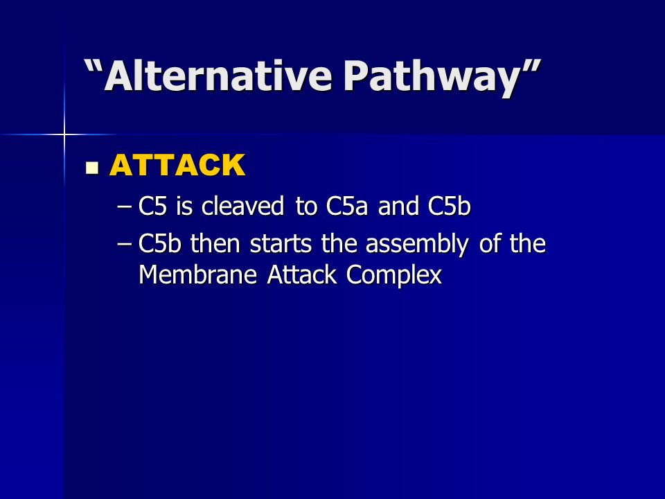 Alternative Pathway ATTACK ATTACK –C5 is cleaved to C5a and C5b –C5b then starts the assembly of the Membrane Attack Complex