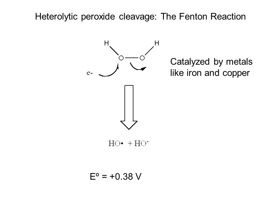 Heterolytic peroxide cleavage: The Fenton Reaction Eº = +0.38 V Catalyzed by metals like iron and copper