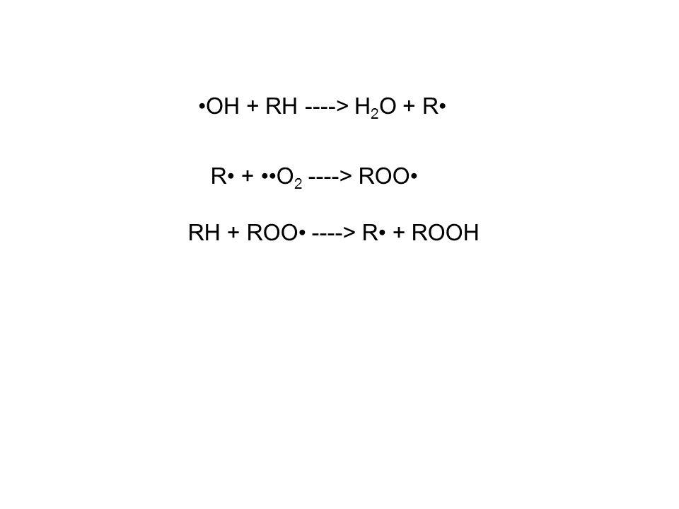 OH + RH ----> H 2 O + R R + O 2 ----> ROO RH + ROO ----> R + ROOH
