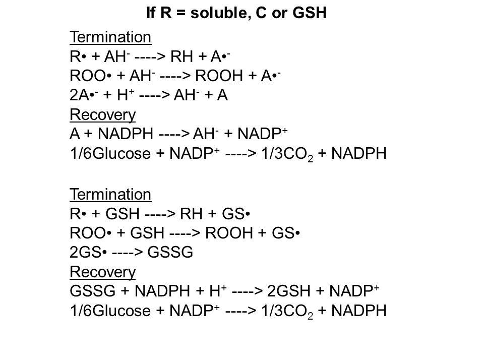 If R = soluble, C or GSH Termination R + AH - ----> RH + A - ROO + AH - ----> ROOH + A - 2A - + H + ----> AH - + A Recovery A + NADPH ----> AH - + NADP + 1/6Glucose + NADP + ----> 1/3CO 2 + NADPH Termination R + GSH ----> RH + GS ROO + GSH ----> ROOH + GS 2GS ----> GSSG Recovery GSSG + NADPH + H + ----> 2GSH + NADP + 1/6Glucose + NADP + ----> 1/3CO 2 + NADPH