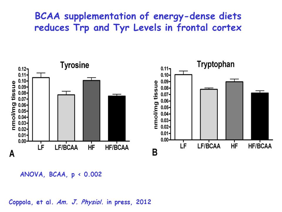 BCAA supplementation of energy-dense diets reduces Trp and Tyr Levels in frontal cortex Coppola, et al.