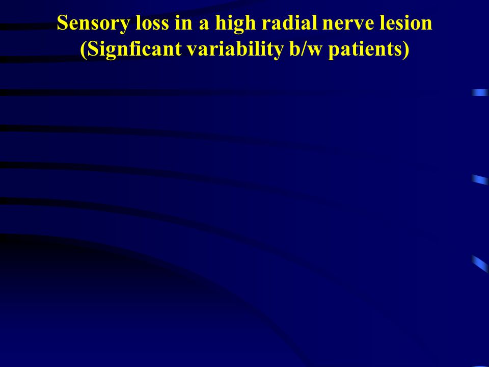 Sensory loss in a high radial nerve lesion (Signficant variability b/w patients)
