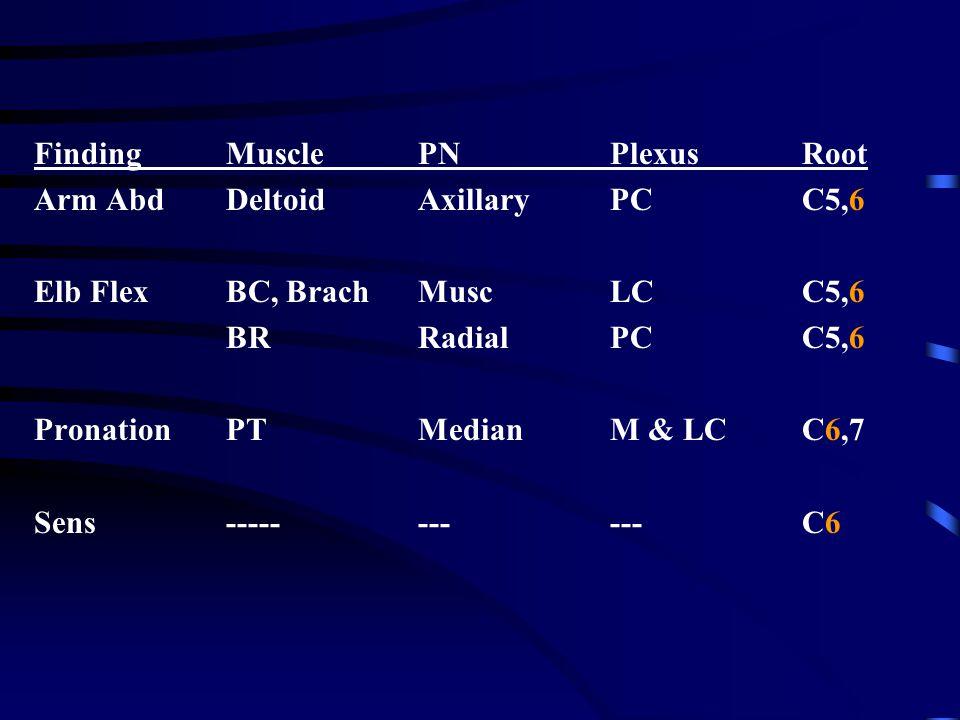 FindingMusclePNPlexusRoot Arm AbdDeltoidAxillaryPCC5,6 Elb FlexBC, BrachMuscLCC5,6 BRRadialPCC5,6 PronationPTMedianM & LCC6,7 Sens-----------C6