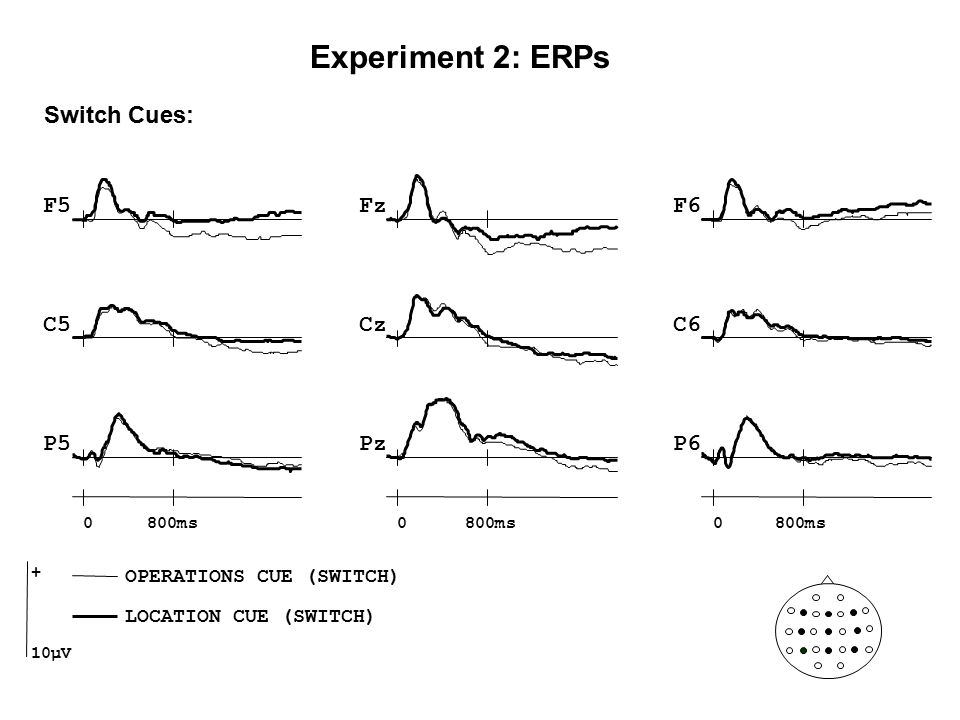 Switch Cues: Cz Pz F5F6 C5C6 P5P6 Fz 0800ms0 0 + 10µV OPERATIONS CUE (SWITCH) LOCATION CUE (SWITCH) Experiment 2: ERPs
