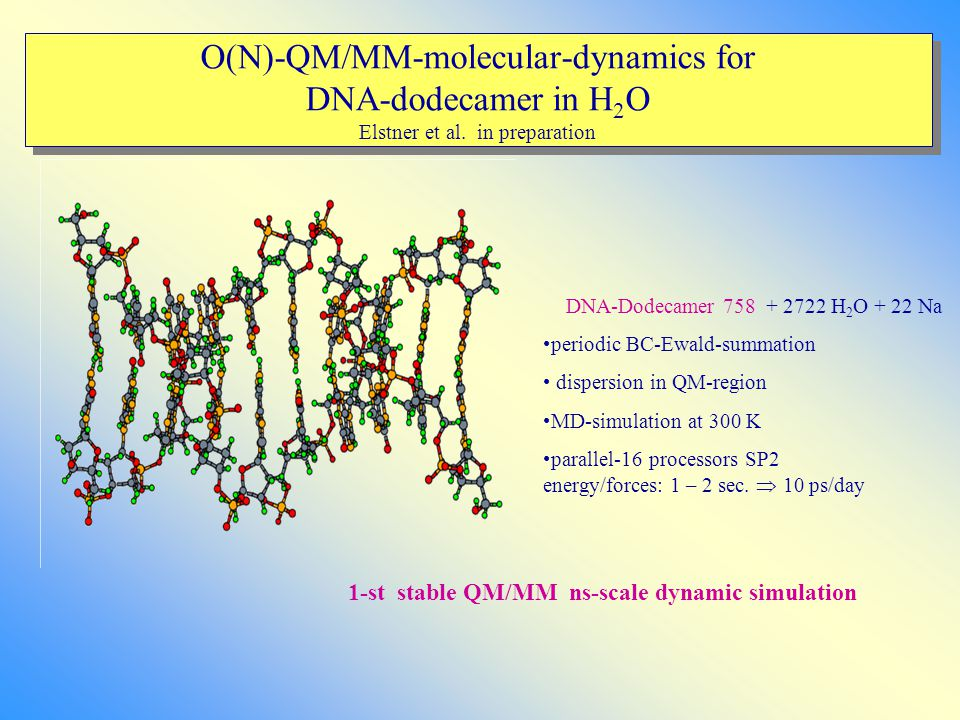 O(N)-QM/MM-molecular-dynamics for DNA-dodecamer in H 2 O Elstner et al. in preparation DNA-Dodecamer 758 + 2722 H 2 O + 22 Na periodic BC-Ewald-summat