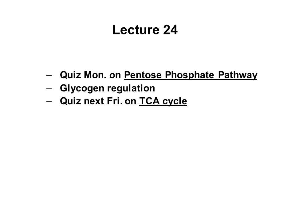 Lecture 24 –Quiz Mon. on Pentose Phosphate Pathway –Glycogen regulation –Quiz next Fri.