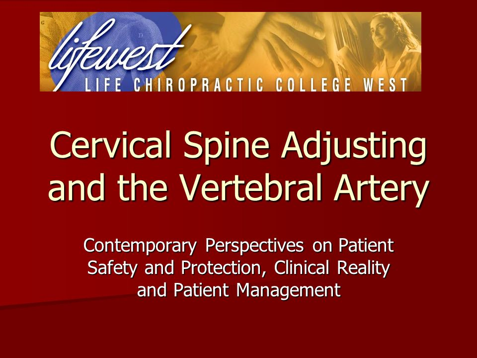 Cervical Spine Adjusting and the Vertebral Artery Contemporary Perspectives on Patient Safety and Protection, Clinical Reality and Patient Management