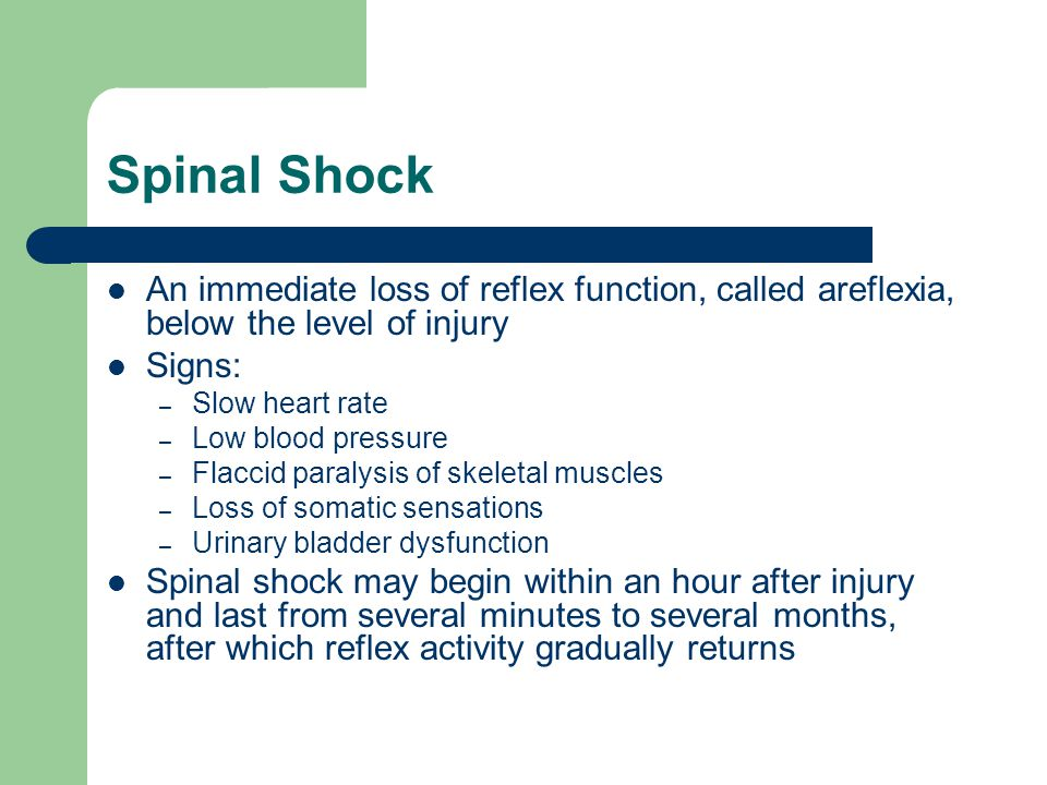 Spinal Shock An immediate loss of reflex function, called areflexia, below the level of injury Signs: – Slow heart rate – Low blood pressure – Flaccid paralysis of skeletal muscles – Loss of somatic sensations – Urinary bladder dysfunction Spinal shock may begin within an hour after injury and last from several minutes to several months, after which reflex activity gradually returns