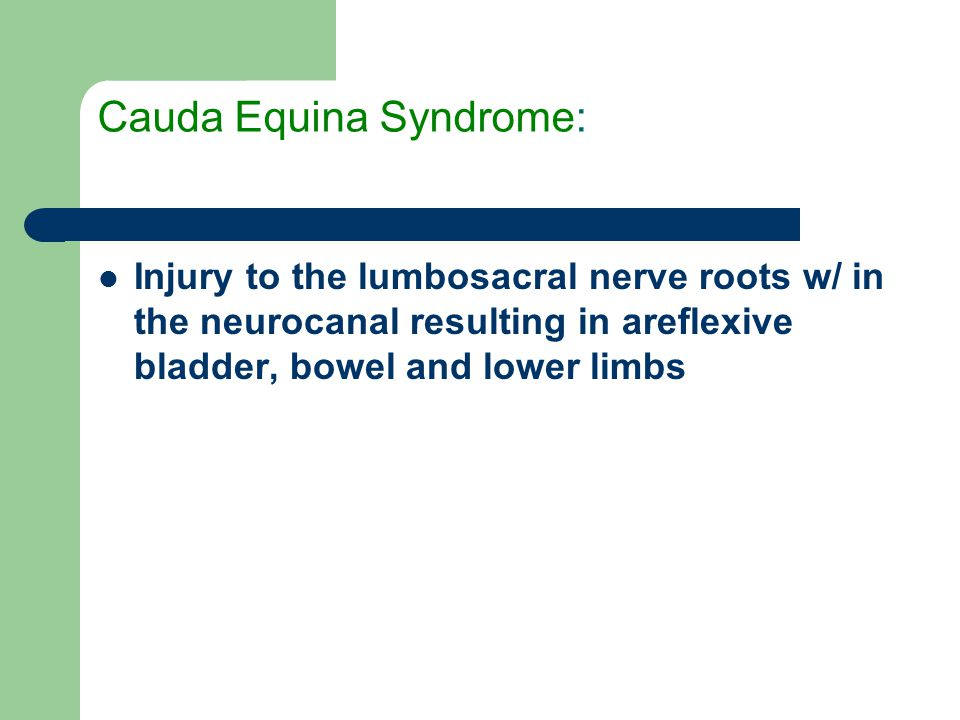 Cauda Equina Syndrome: Injury to the lumbosacral nerve roots w/ in the neurocanal resulting in areflexive bladder, bowel and lower limbs