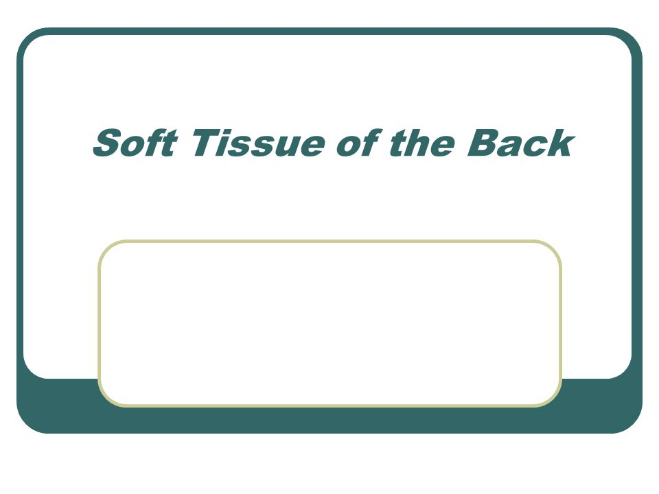 Soft Tissue of the Back