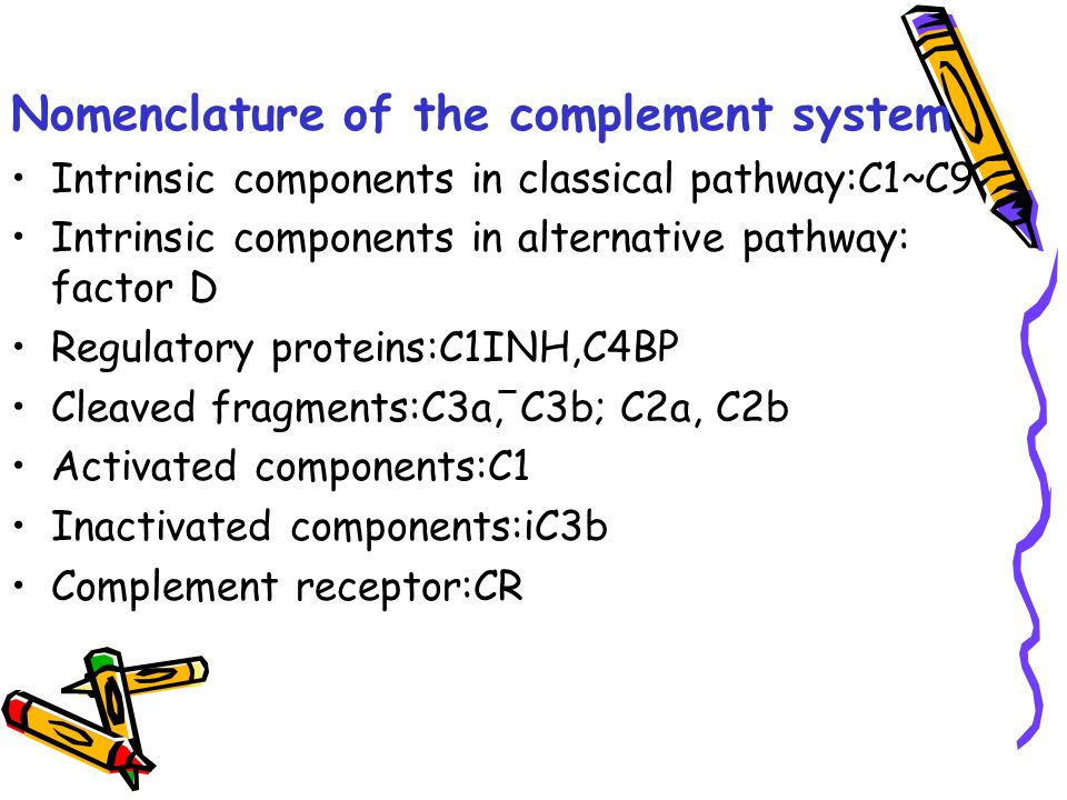 Nomenclature of the complement system Intrinsic components in classical pathway:C1~C9 Intrinsic components in alternative pathway: factor D Regulatory