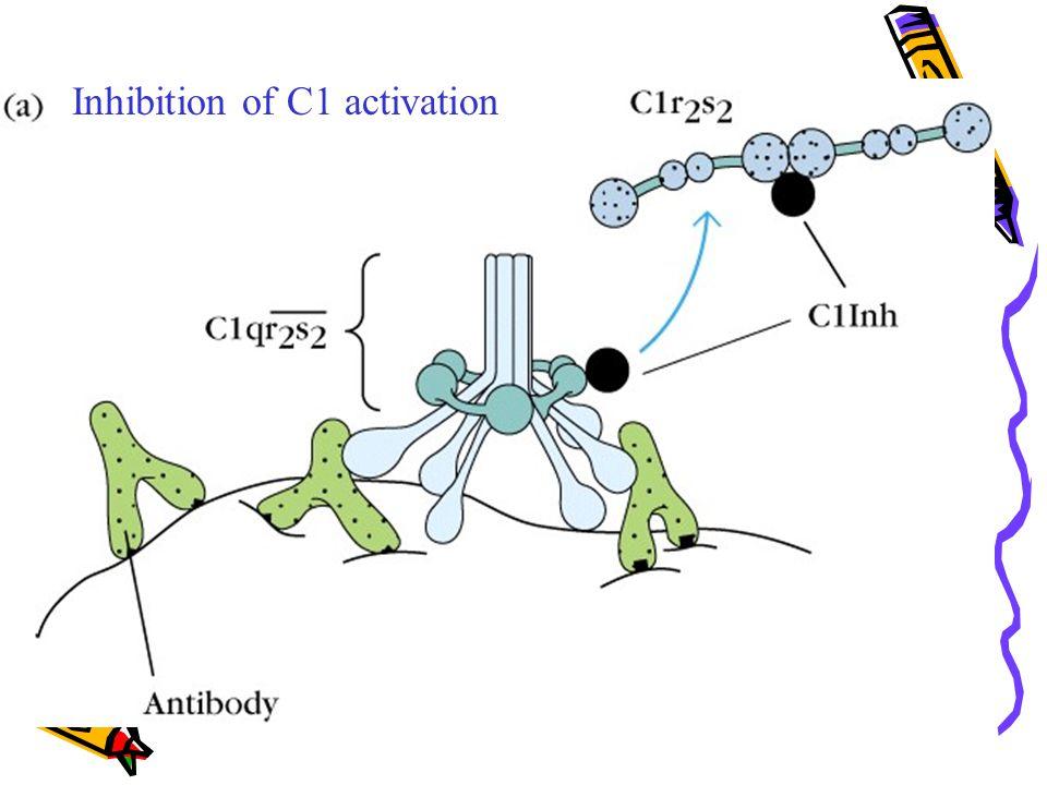 Inhibition of C1 activation