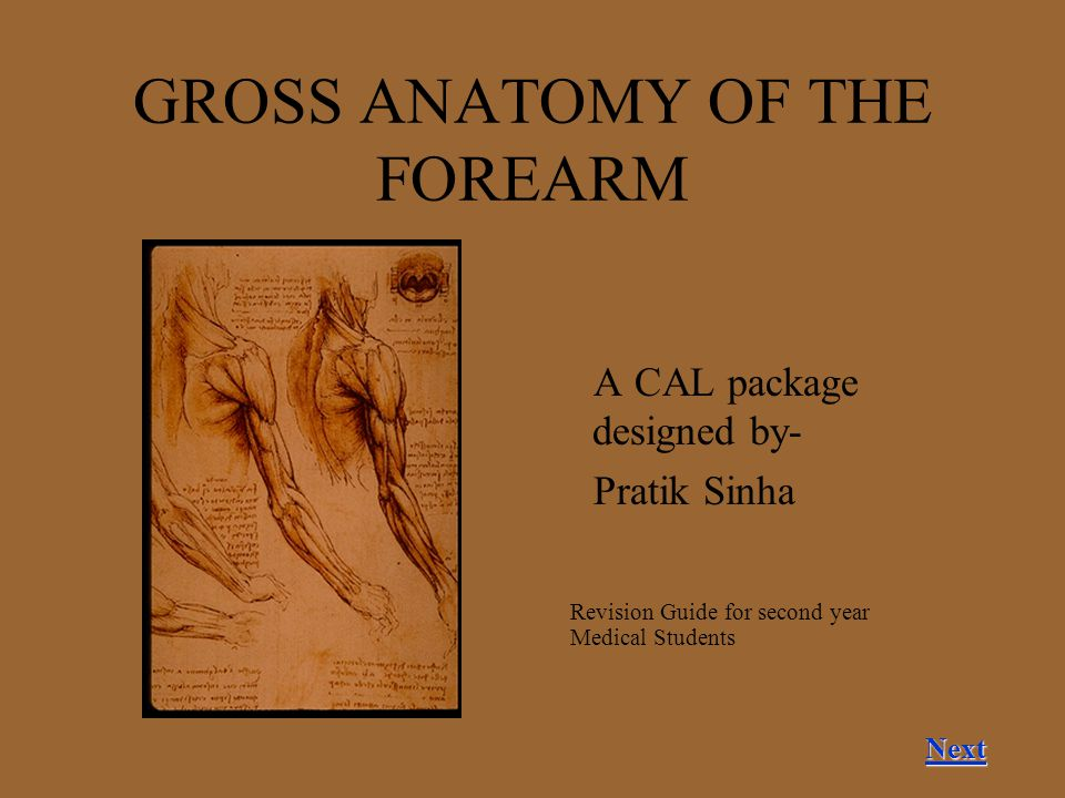 GROSS ANATOMY OF THE FOREARM A CAL package designed by- Pratik Sinha Next Revision Guide for second year Medical Students