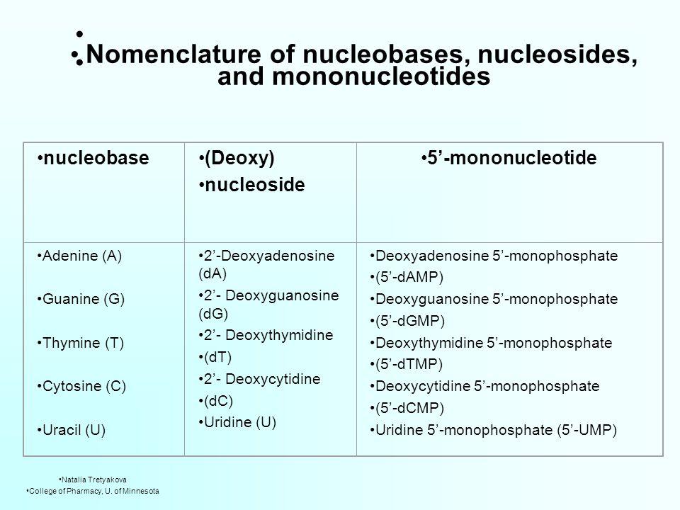 nucleobase(Deoxy) nucleoside 5'-mononucleotide Adenine (A) Guanine (G) Thymine (T) Cytosine (C) Uracil (U) 2'-Deoxyadenosine (dA) 2'- Deoxyguanosine (dG) 2'- Deoxythymidine (dT) 2'- Deoxycytidine (dC) Uridine (U) Deoxyadenosine 5'-monophosphate (5'-dAMP) Deoxyguanosine 5'-monophosphate (5'-dGMP) Deoxythymidine 5'-monophosphate (5'-dTMP) Deoxycytidine 5'-monophosphate (5'-dCMP) Uridine 5'-monophosphate (5'-UMP) Nomenclature of nucleobases, nucleosides, and mononucleotides Natalia Tretyakova College of Pharmacy, U.