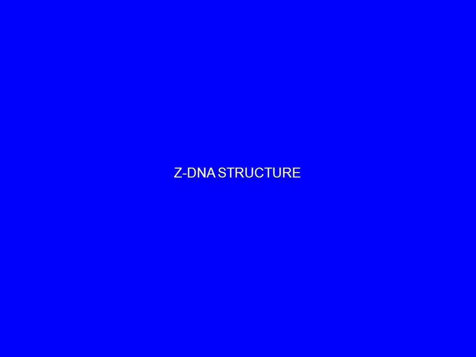 Z-DNA STRUCTURE