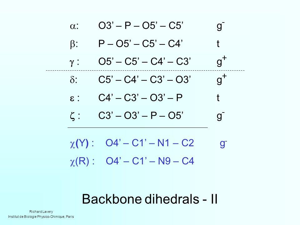 Backbone dihedrals - II  :O3' – P – O5' – C5'g -  :P – O5' – C5' – C4't  :O5' – C5' – C4' – C3'g +  :C5' – C4' – C3' – O3'g +  :C4' – C3' – O3' – Pt  :C3' – O3' – P – O5'g -  (Y) : O4' – C1' – N1 – C2g -  (R) : O4' – C1' – N9 – C4 Richard Lavery Institut de Biologie Physico-Chimique, Paris