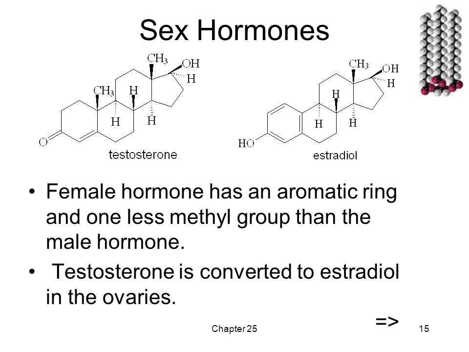Chapter 2515 Sex Hormones Female hormone has an aromatic ring and one less methyl group than the male hormone.