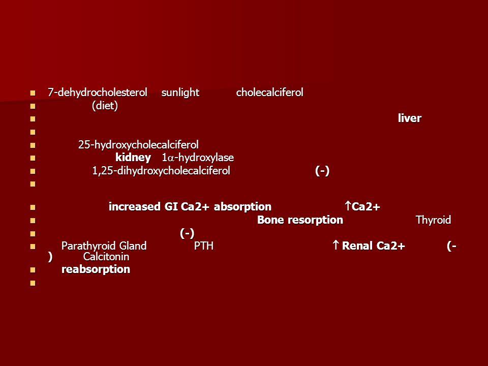 7-dehydrocholesterol sunlight cholecalciferol 7-dehydrocholesterol sunlight cholecalciferol (diet) (diet) liver liver 25-hydroxycholecalciferol 25-hydroxycholecalciferol kidney 1  -hydroxylase kidney 1  -hydroxylase 1,25-dihydroxycholecalciferol (-) 1,25-dihydroxycholecalciferol (-) increased GI Ca2+ absorption  Ca2+ increased GI Ca2+ absorption  Ca2+ Bone resorption Thyroid Bone resorption Thyroid (-) (-) Parathyroid Gland PTH  Renal Ca2+ (- ) Calcitonin Parathyroid Gland PTH  Renal Ca2+ (- ) Calcitonin reabsorption reabsorption